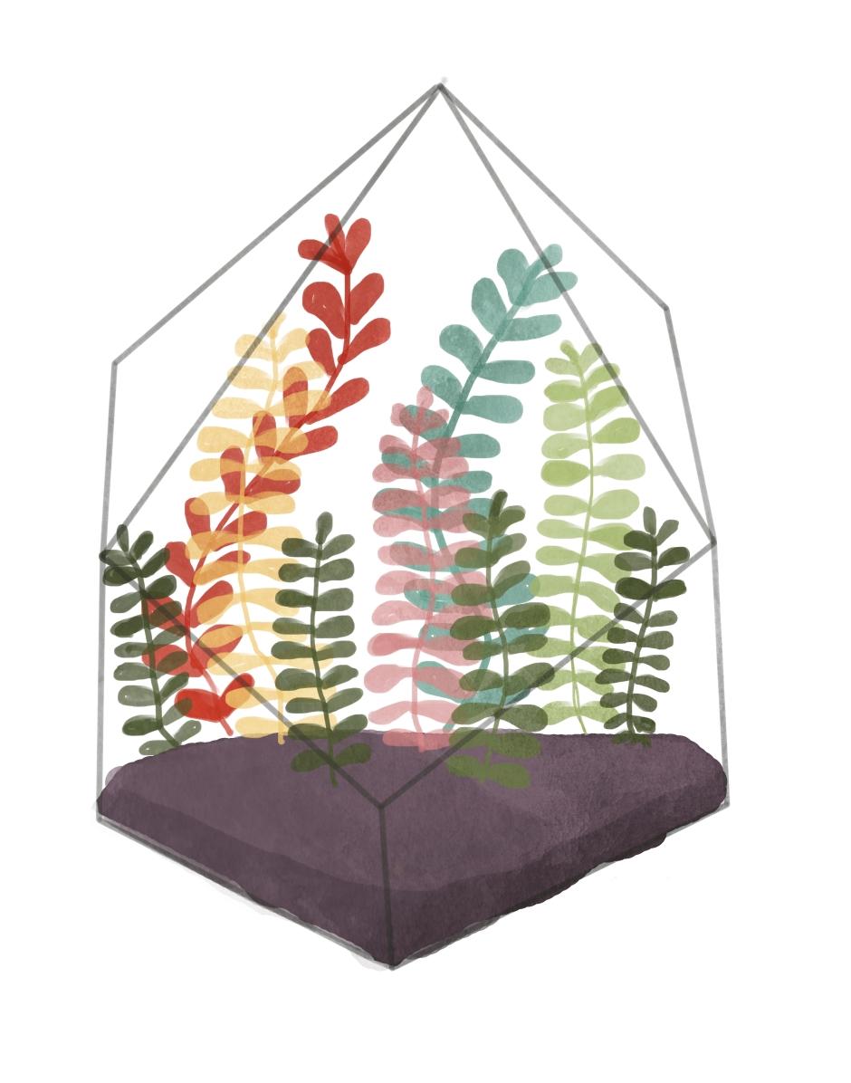 terrarium (4)